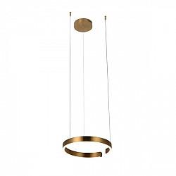 Подвесной светильник Ring 10013S
