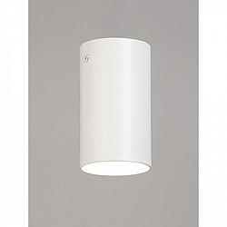 Точечный светильник V4640-0/1PL