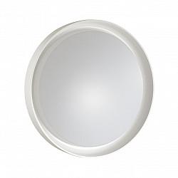 3030/DL SN 017 св-к BIONIC пластик LED 48Вт 3000-6500K D410 IP43 пульт ДУ/ LampSmart