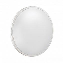 3014/DL SN 036 св-к SMALLI пластик LED 48Вт 3000-6500K D380 IP43 пульт ДУ/ LampSmart