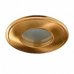 369304 NT09 389 золото Встраиваемый НП светильник IP65 GX5.3 50W 12V AQUA