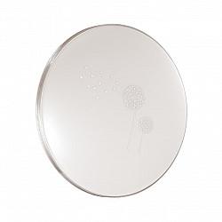 3005/DL SN 029 св-к AIRITA пластик LED 48Вт 3000-6500K D395 IP43 пульт ДУ/ LampSmart