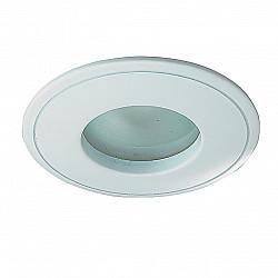 369305 NT09 389 белый свет Встраиваемый НП светильник IP65 GX5.3 50W 12V AQUA