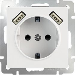 Розетка с заземлением, шторками и USBх2 (белая) WL01-SKGS-USBx2-IP20