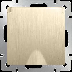 Розетка влагозащ. с зазем. с защит. крышкой и шторками (шампань рифленый) WL10-SKGSC-01-IP44